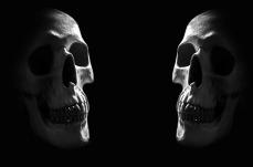 anatomy-71732_1280